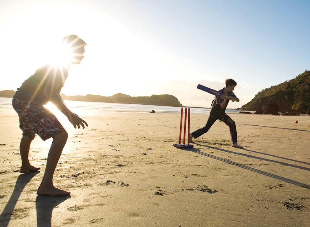 I-love-cricket